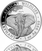 Somalia Elefant Silber 2021