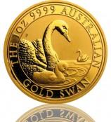 Australien Schwan