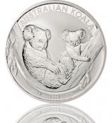 Koala 2011