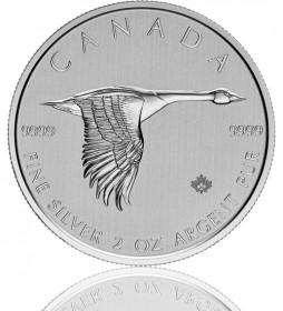 Kanada 2 oz Silber Gans 2020 Goose