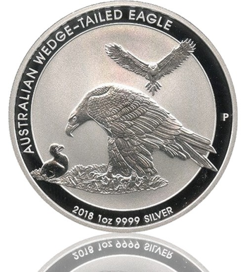 Australien Wedge Tailed Eagle 2018