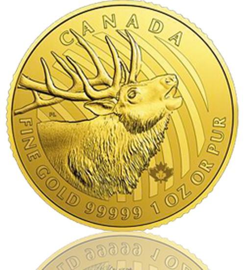 Bulking Elk Gold 1 oz 2017 - Röhrender Hirsch - Call of the Wild