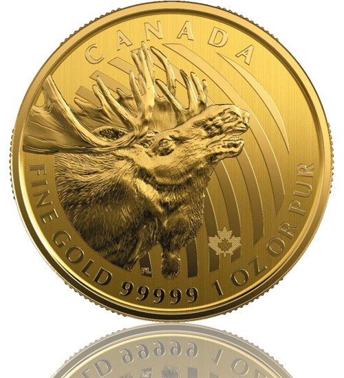 Moose Gold 1 oz 2019 - Elch - Call of the Wild