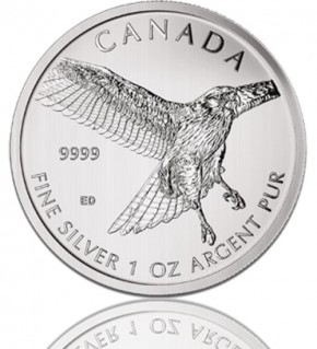 1 oz Red-Tailed Hawk - Rotschwanzbussard 2015