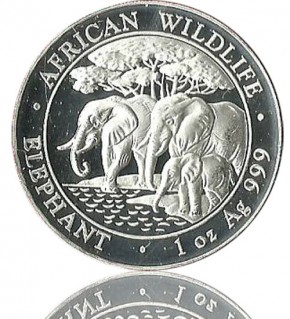 1 oz Somalia Elefant 2013 African Wildlife