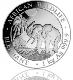 1 kg Somalia Elefant 2017 African Wildlife